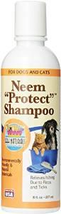 Ark Naturals Neem Protect Shampoo 8 Oz. {bin-1}